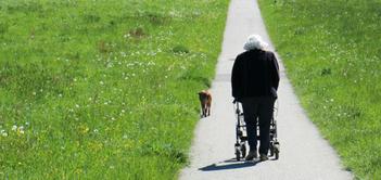 walker safety blog.png