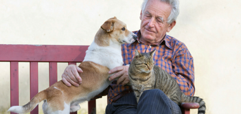Pets for Seniors: Animals Can Make Older Adults Happier and Healthier