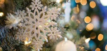 All I Want for Christmas (Senior Edition)